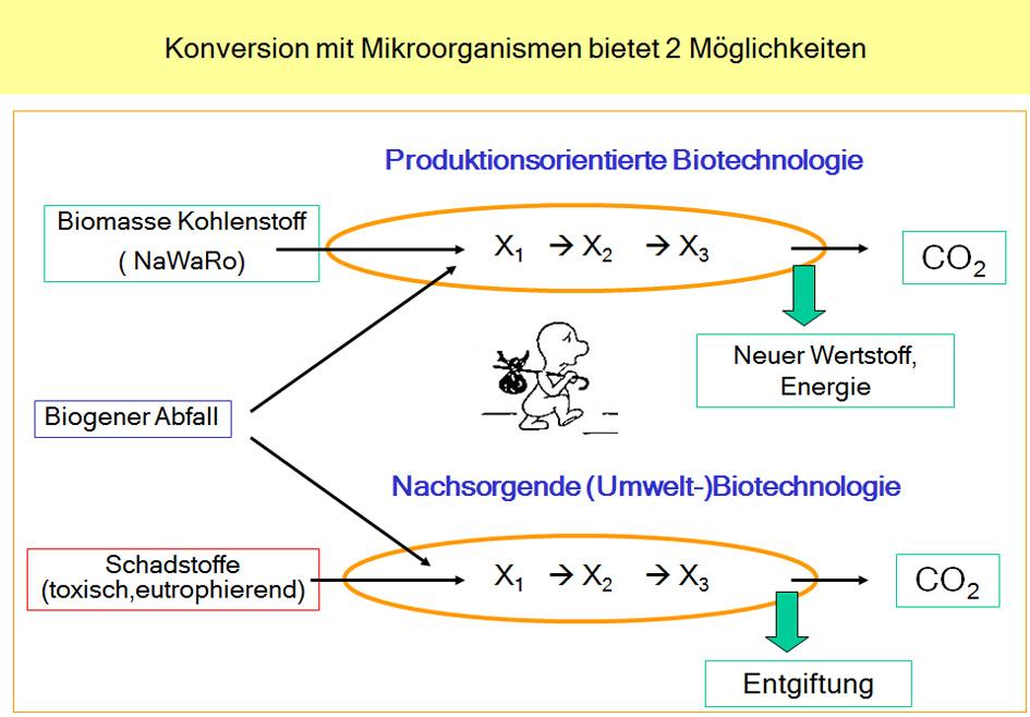 Biotechnik - ein wichtiges Werkzeug für den vor- und nachsorgenden Umweltschutz