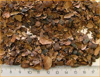 Kakaobohnenschalen
